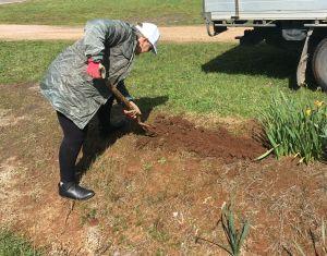 Person digging a garden.